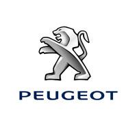 Peugeot Boot Liner